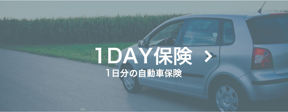 1DAY保険